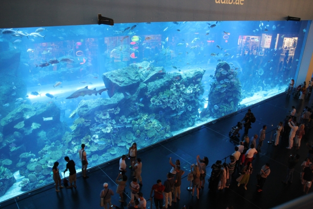 Аквариум в Дубай Молле (Aquarium of the Dubai Mall & Underwater Zoo)