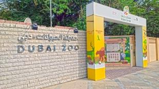 Зоопарк в дубай отзывы виллу